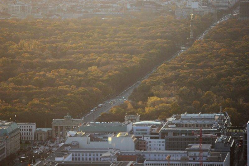 Berlin in autumn Tiergarten