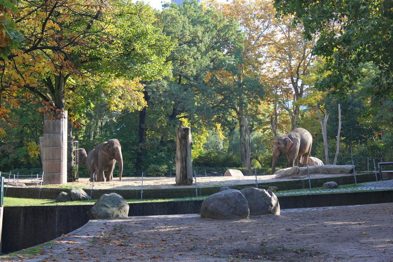 9 Best Things to do in Berlin in Autumn